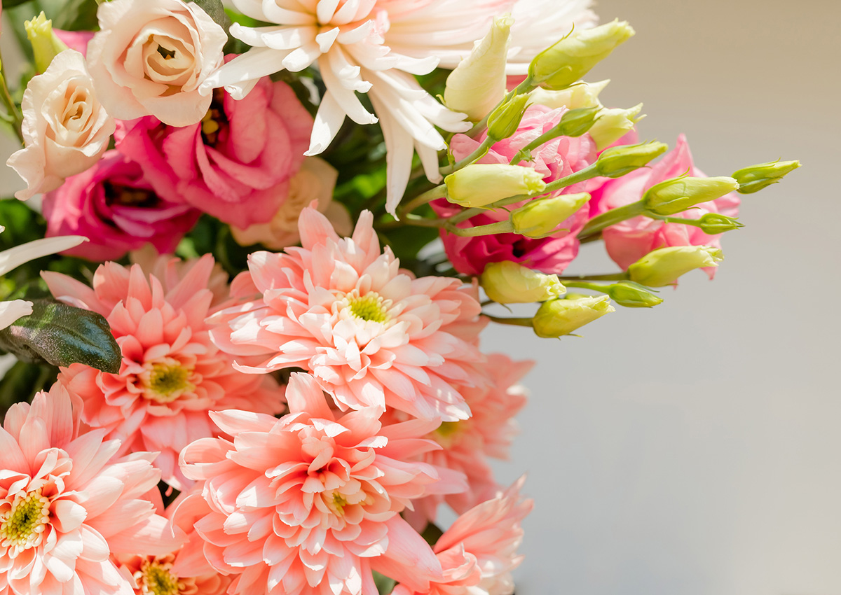 bigstock-Pink-Orange-Chrysanthemum-Flow-281759596