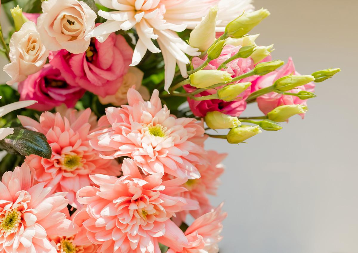 bigstock-Pink-Orange-Chrysanthemum-Flow-281759596